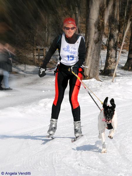 SkiJöring2