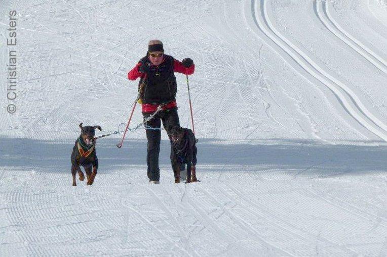 Ski JoeringBaltoQuinzo-011