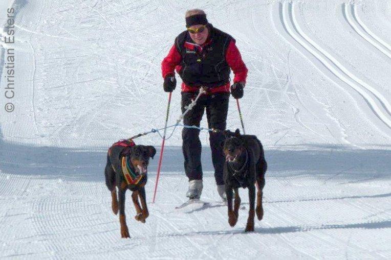 Ski JoeringBaltoQuinzo-012