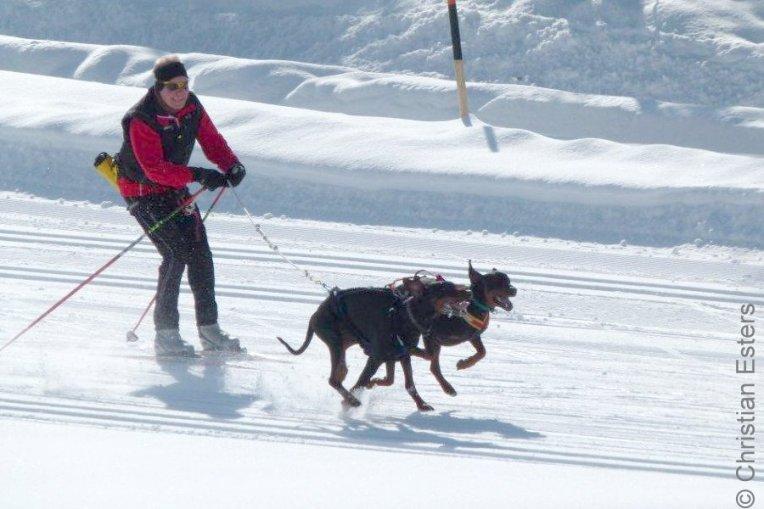 Ski JoeringBaltoQuinzo-019