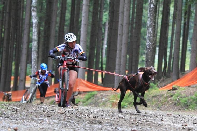 Europameisterin Kategorie Scooter Ursula Steeb mit Hund «Ole» © Copyright by Alexandra Chavez