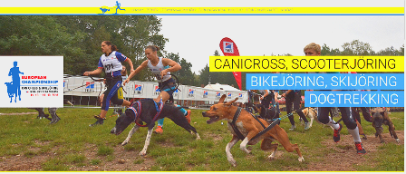 canicross_cz